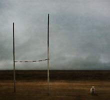 Rugby country by Jill Ferry