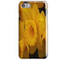 Welsh Dafs iPhone Case/Skin