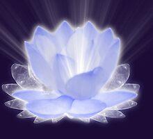 Lotus Flower by saleire