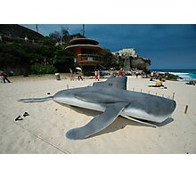 Beached Submarine Life @ Sculptures By The Sea Photographic Print