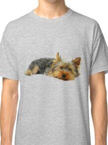 Cute Yorkshire terrier Classic T-Shirt
