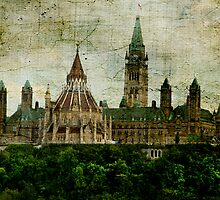 The Library on The Hill by Wendi Donaldson Laird