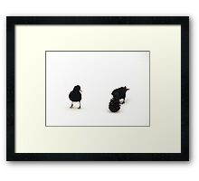 Silly Starlings 3 Framed Print