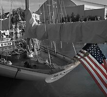 JFK Sailboat in Annapolis Maryland by Katt Stevens
