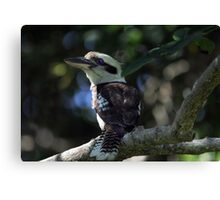 Forest Floor Hunting Canvas Print