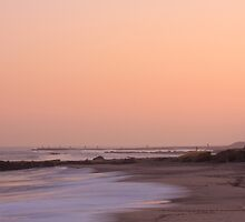 new jersey shore by boris reyt
