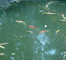 A Fish Parade by Joseph Green