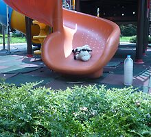 Moo Moo Having Fun Coming Down the Slide by Joseph Green