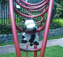 Moo Moo having fun on the monkey bars by Joseph Green