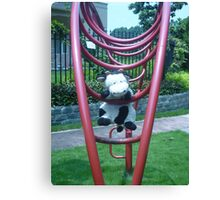 Moo Moo having fun on the monkey bars Canvas Print