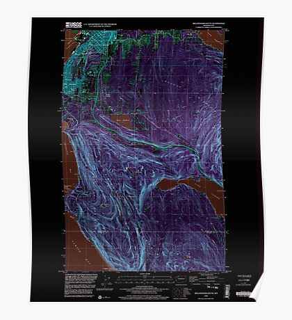 USGS Topo Map Washington State WA Bellingham South 240003 1998 24000 Inverted Poster