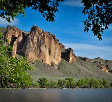 Rooster Combs on the Owyhee by Chad M