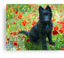 """Poppy"" Canvas Print"
