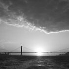 SF 2 by RysQue' Photography