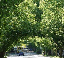 Hawkesbury Valley Way, Richmond NSW by DashTravels