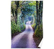 Winding Country Lane Poster