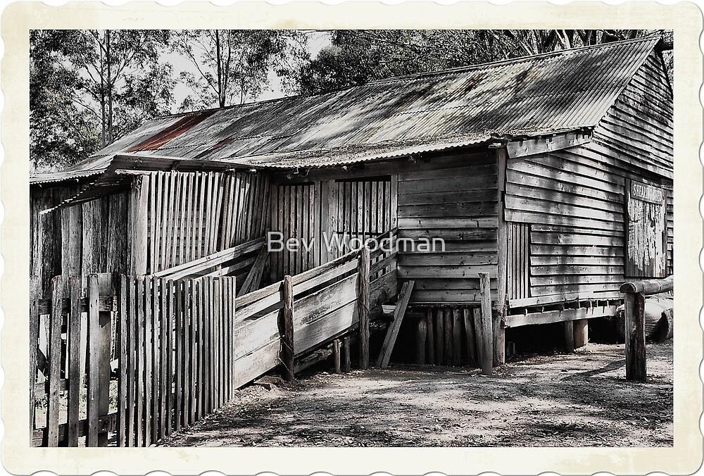 The Shearing Shed - Australiana Pioneer Village Wilberforce NSW Australia by Bev Woodman
