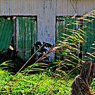 Barn Doors by Masterclass