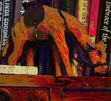 A camel's journey across the bookshelf by Paul Todd