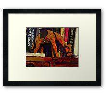 A camel's journey across the bookshelf Framed Print