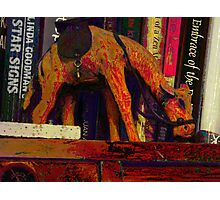 A camel's journey across the bookshelf Photographic Print