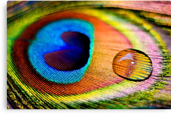 The soul would have no rainbow had the eyes no tears by Ulla Jensen