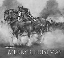 The Team Merry Christmas by Lyn Green