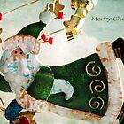 Super Santa by Lynda Heins