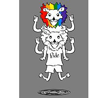 Gay Pride Of Lions Photographic Print