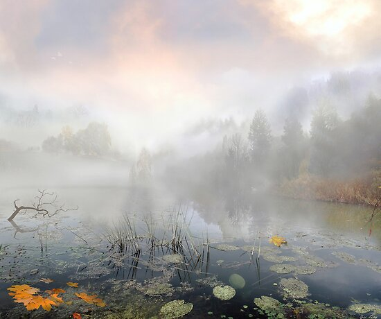 Autumn Morning by Igor Zenin