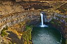 Palouse Falls by Dan Mihai