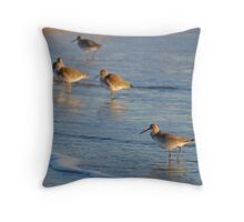 Willets Throw Pillow