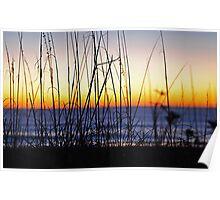 Sunrise Through the Dunes Poster