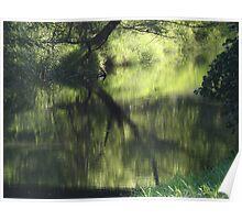 River scenic - Rio Cuale in Puerto Vallarta Poster