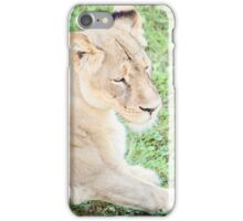 African Lioness iPhone Case/Skin