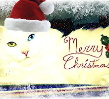 Merry Merry - Delain Christmas Card by Scott Mitchell