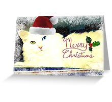 Merry Merry - Delain Christmas Card Greeting Card