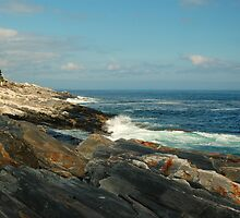 Pemaquid Coastline, Maine by fauselr