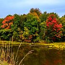Autumn in Mabou by kenmo