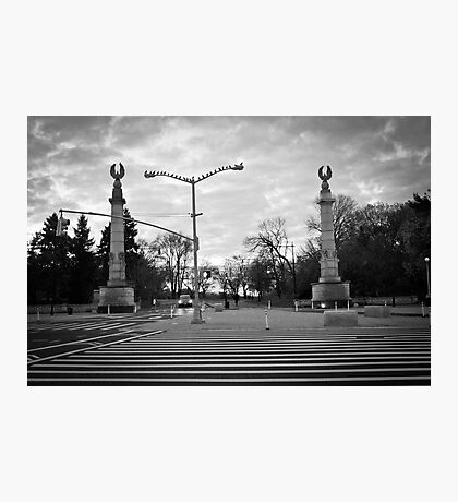 Brooklyn Grand Army Plaza: birds on a wire Photographic Print