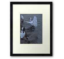 He - this is my fish ground - He - este es mi terreno para pescar Framed Print