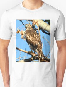 Red Tailed Hawk in Tree T-Shirt