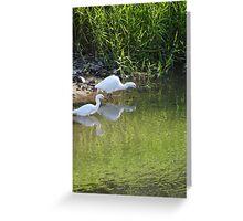 Peaceful fishing - Pescando en paz Greeting Card
