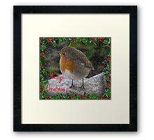 Robin - Merry Christmas Framed Print