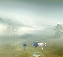 Villager by Igor Zenin