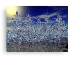 Winter Transformation Canvas Print