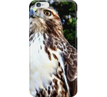Adult Red Tailed Hawk iPhone Case/Skin