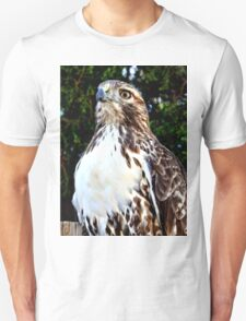 Adult Red Tailed Hawk T-Shirt