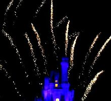 Fireworks, Walt Disney World by rc2061988