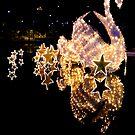 Christmas Swans by Steve